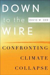 Foto Cover di Down to the Wire: Confronting Climate Collapse, Ebook inglese di David W. Orr, edito da Oxford University Press