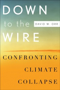 Ebook in inglese Down to the Wire: Confronting Climate Collapse Orr, David W.