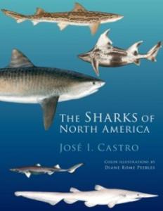 Ebook in inglese Sharks of North America Castro, Jose I.