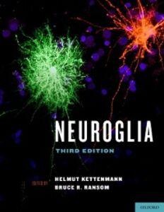 Foto Cover di Neuroglia, Ebook inglese di Bruce R. Ransom, edito da Oxford University Press