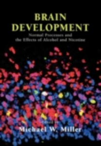 Ebook in inglese Brain Development: Normal Processes and the Effects of Alcohol and Nicotine -, -