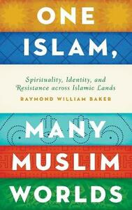 One Islam, Many Muslim Worlds: Spirituality, Identity, and Resistance across Islamic lands - Raymond William Baker - cover