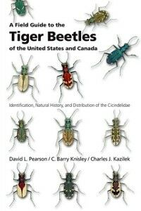 Ebook in inglese Field Guide to the Tiger Beetles of the United States and Canada: Identification, Natural History, and Distribution of the Cicindelidae Kazilek, Charles J. , Knisley, C. Barry , Pearson, David L.