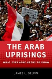 Arab Uprisings: What Everyone Needs to Know