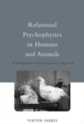 Relational Psychophysics in Humans and Animals