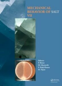 Ebook in inglese Mechanical Behaviour of Salt VII -, -