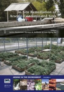 Ebook in inglese In-Situ Remediation of Arsenic-Contaminated Sites -, -