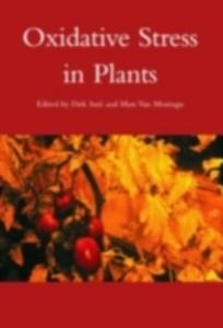 Ebook in inglese Oxidative Stress in Plants Inze, Dirk , Montagu, Marc Van