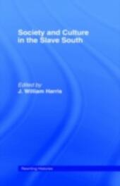 Society and Culture in the Slave South