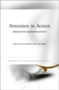 Ebook in inglese Attention in Action -, -