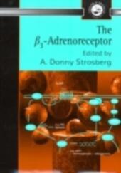 B3 Adrenoreceptor
