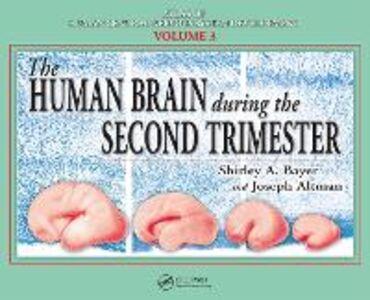Foto Cover di Human Brain During the Second Trimester, Ebook inglese di Joseph Altman,Shirley A. Bayer, edito da CRC Press