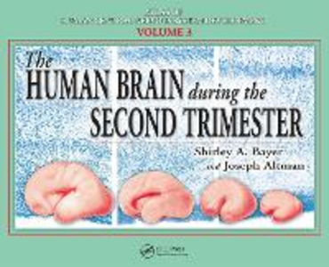 Ebook in inglese Human Brain During the Second Trimester Altman, Joseph , Bayer, Shirley A.
