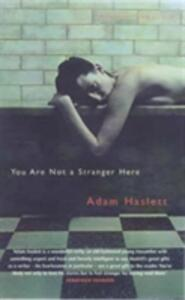 You Are Not A Stranger Here? - Adam Haslett - cover