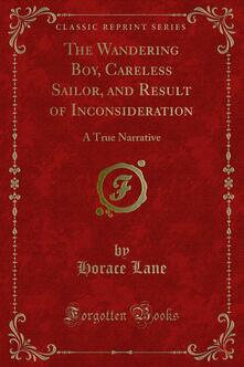 The Wandering Boy, Careless Sailor, and Result of Inconsideration