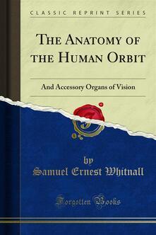 The Anatomy of the Human Orbit