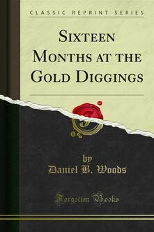 Sixteen Months at the Gold Diggings