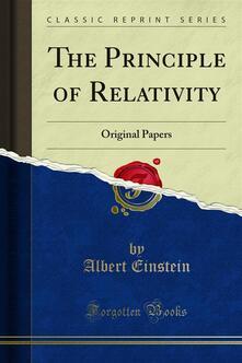 The Principle of Relativity