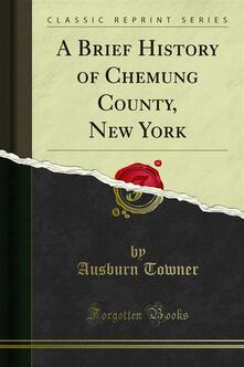 A Brief History of Chemung County, New York