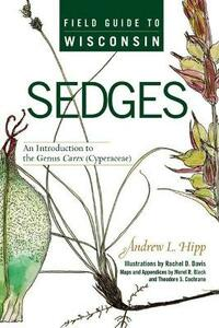 Field Guide to Wisconsin Sedges: An Introduction to the Genus Carex (Cyperaceae) - Andrew Hipp - cover