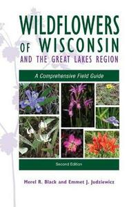 Wildflowers of Wisconsin and the Great Lakes Region: A Comprehensive Field Guide - Merel R. Black,Emmet J. Judziewicz - cover
