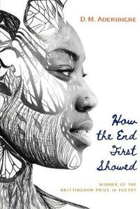 How the End First Showed - D. M. Aderibigbe - cover
