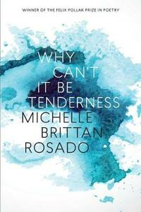 Why Can't It Be Tenderness - Michelle Brittan Rosado - cover