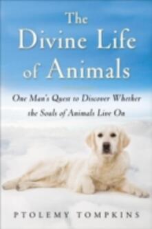 Divine Life of Animals