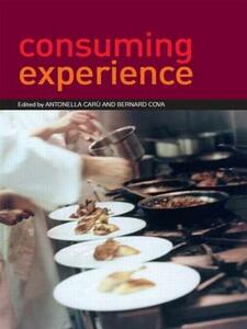 Consuming Experience - cover