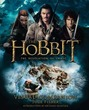 Hobbit: The Desolation of Smaug Visual C