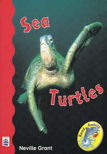 Sea Turtles - Neville Grant - cover
