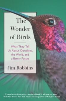 Wonder of Birds