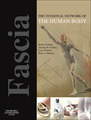 Fascia: The Tensiona