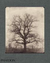 William Henry Fox Talbot. Ediz. inglese