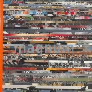 magnum Degrees - Michael Ignatieff - cover