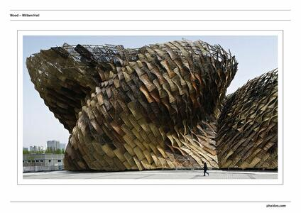 Wood. Ediz. a colori - William Hall - 2