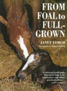 From Foal to Full-grown - Janet Lorch - cover