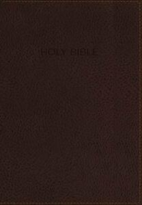NKJV, Foundation Study Bible, Leathersoft, Brown, Indexed, Red Letter Edition - Thomas Nelson - cover