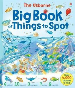Big Book of Things to Spot - cover