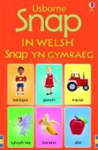 Snap in Welsh - Stephanie Jones - cover