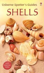 Shells - cover