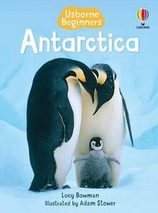 Antarctica - Lucy Bowman - cover