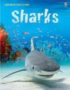Sharks - cover