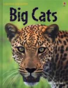 Big Cats - cover