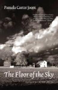 The Floor of the Sky - Pamela Carter Joern - cover
