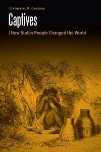 Captives: How Stolen People Changed the World - Catherine M. Cameron - cover