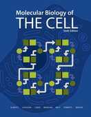 Libro in inglese Molecular Biology of the Cell Bruce Alberts