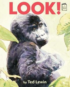 Look! - Ted Lewin - cover