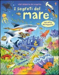 Foto Cover di I segreti del mare, Libro di Katie Daynes,Colin King, edito da Usborne Publishing