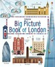 Big Picture Book of